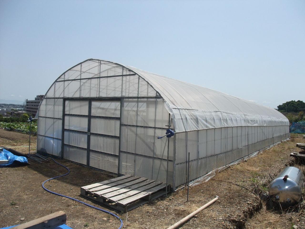 原種保存用の網室